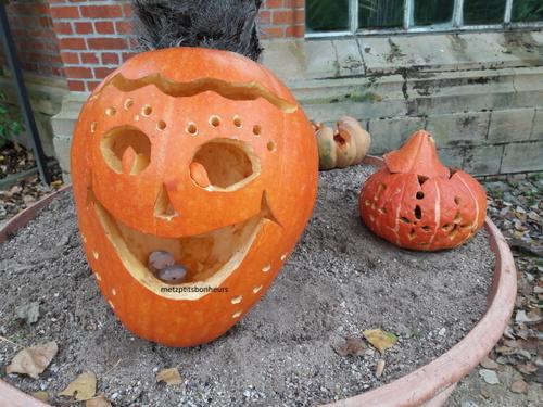 Halloween..déjà !