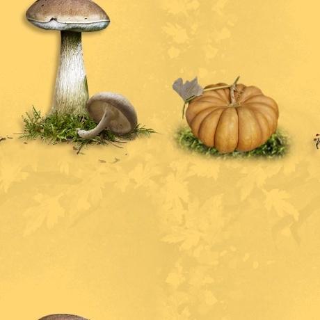 Textures automne