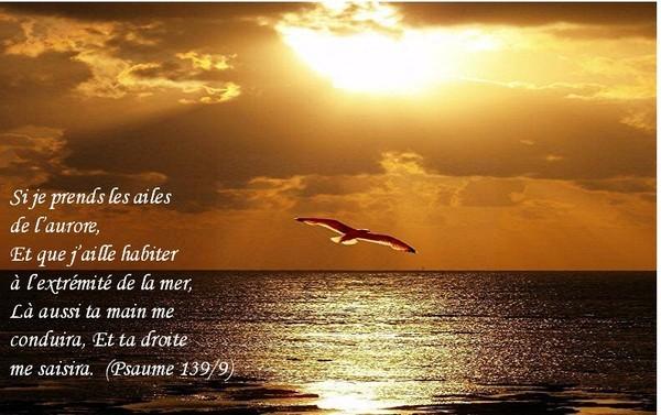 Psaume 139 (L'omniscience de Yahweh) dans Psaumes 9affaa44