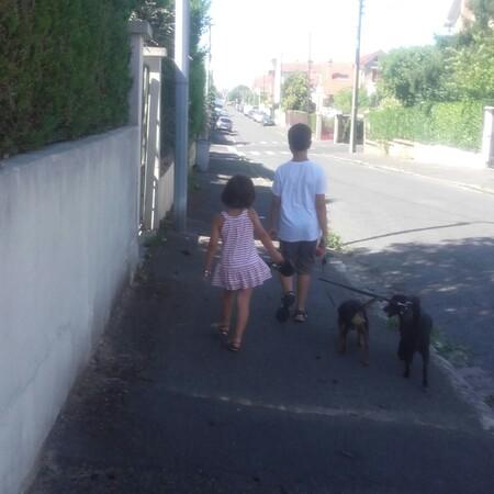Balade avec Gabin et Soline