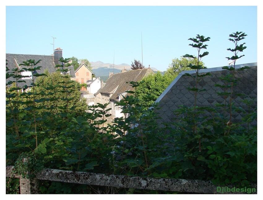 La tour d'Auvergne,