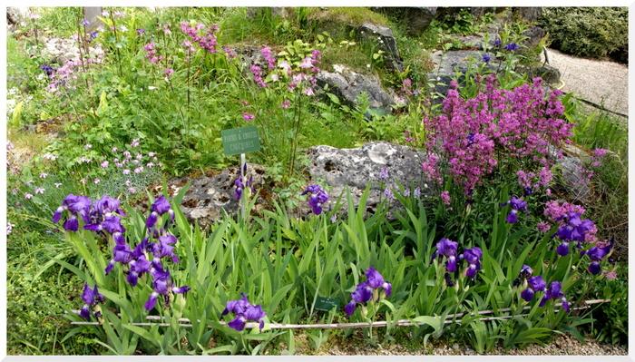 Paris. Jardin Alpin. mai 2017.