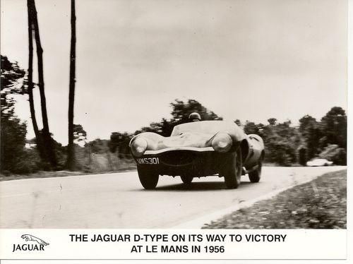 Mike Hawthorn - Le Mans 1956