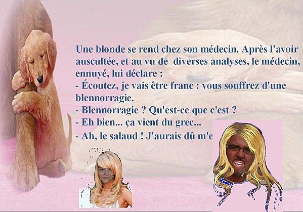 blague-blonde-8.jpg