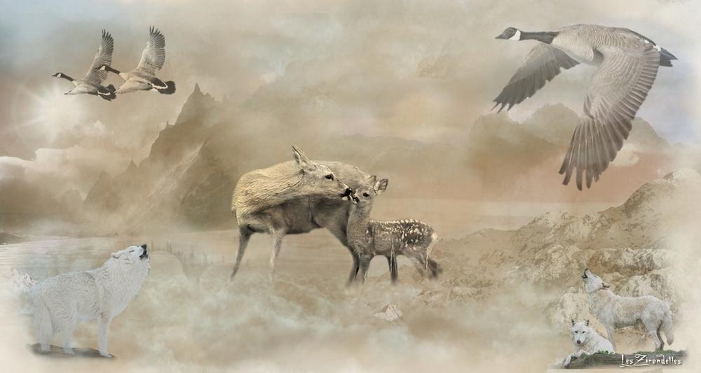 Entêtes/Footers automne hiver, loups et biches