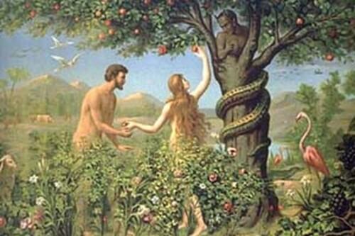 Pourquoi Dieu permet le mal que l'on fait aux humains ?
