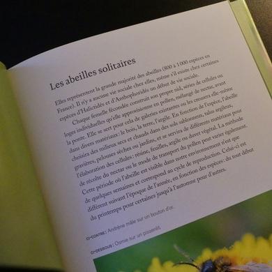 Abeilles sauvages de Philippe Boyer...