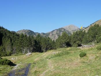 En allant à la Bassette. La flèche jaune désigne l'endroit où on arrive sur le plateau