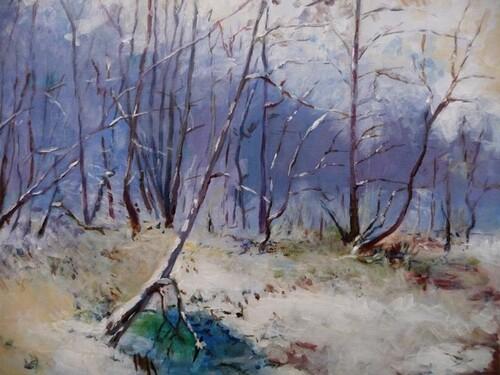Sous bois en hiver