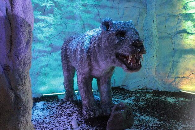Dinosaures, animaux et hommes préhistoriques