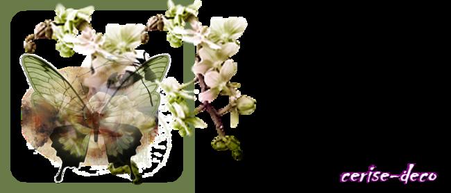 design pureté du printemps