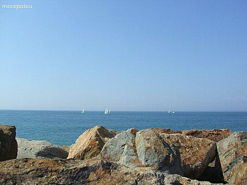 mer-herbaudiere.jpg
