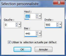 Selection pour effacer