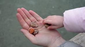 Les pierres ...