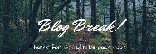 Blog en pause.....