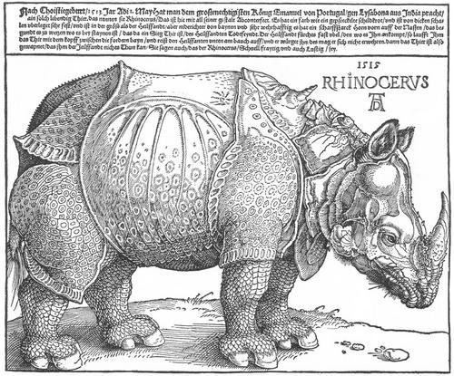 Galerie d'art : Rhinocéros