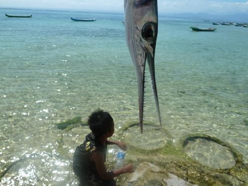 Fin de notre périple par la petite île de Nusa Lembongan