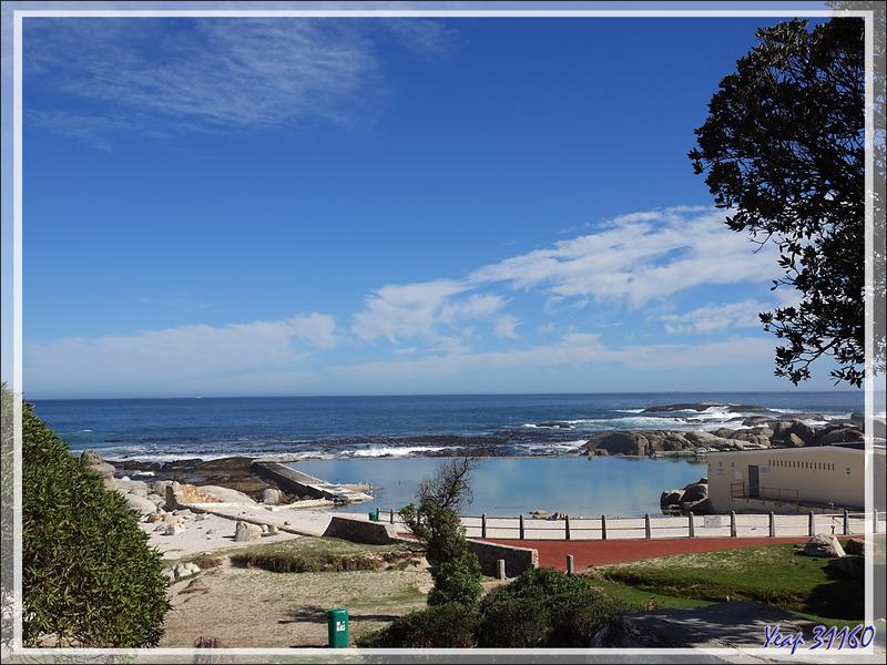 26 mars 2019 : nouvelle journée à Camps Bay  - Cape Town - Afrique du Sud