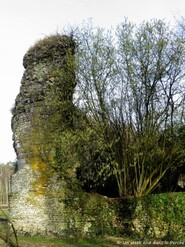 LES REMPARTS DE L'HÔME-CHAMONDOT (Orne)