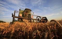 """Résultat de recherche d'images pour """"artisanat agriculteur libéraux"""""""