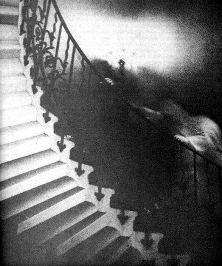 tulip-staircase-photo