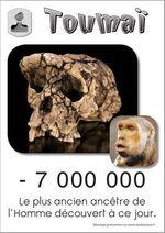 Toumaï le plus ancien ancêtre de l'Homme