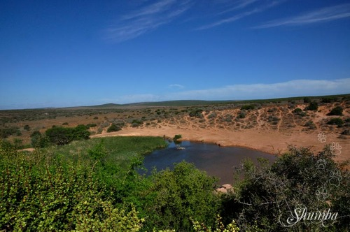 Addo Elephant National Park (Game section)