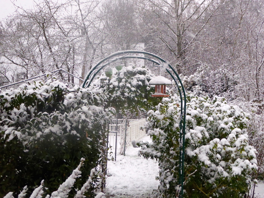 Ca y est il neige, dans mon jardin... dehors aussi!