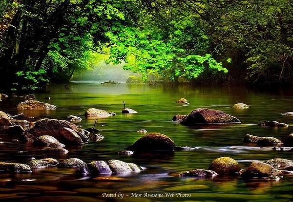 Quand la pierre habille la nature...