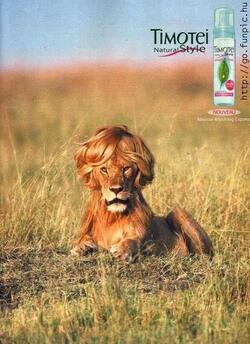 Du liniment dans les cheveux parceque tu le vaut bien