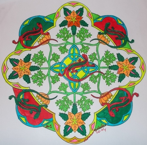 DOMANDALAS  album coloriages nature mandalas par Marty Noble