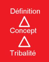 Qu'est ce que la Tribalité