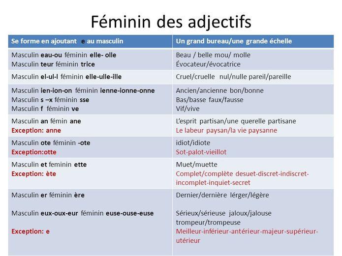 masculin et feminin des adjectifs exercices