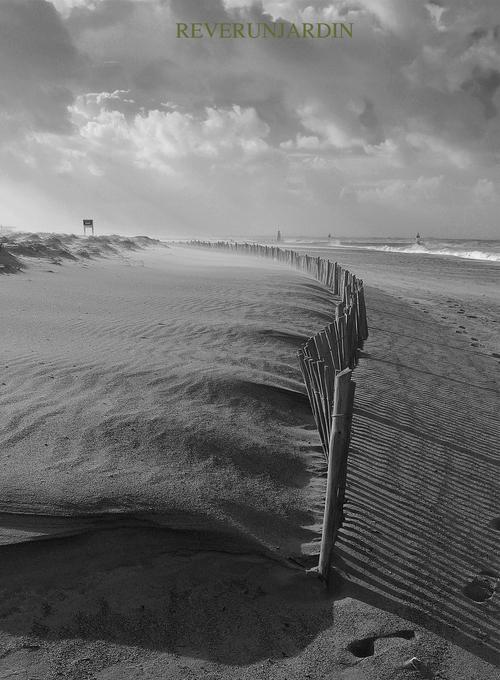Grand frais à coup de vent en cours (2)