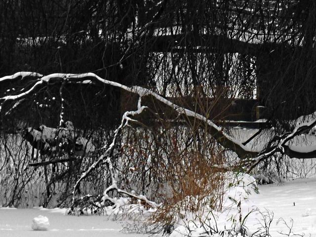 Metz sous la neige 13 26 12 2010 mp1357