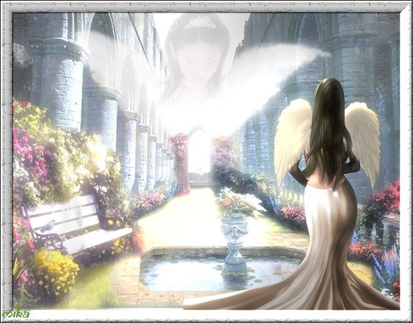anges de toutes sortes