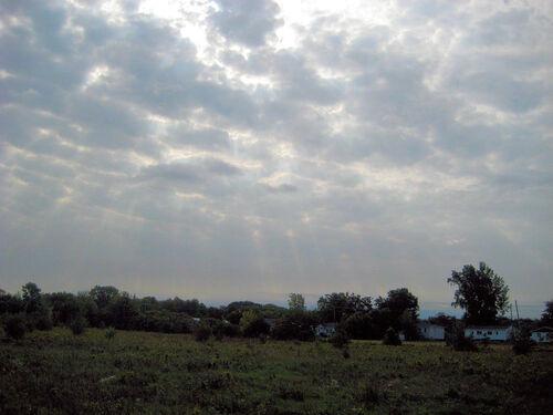 Parc naturel des Parulines ( 2 )