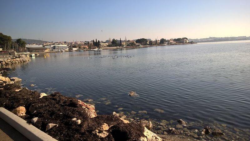 Balade autour de l'étang de Thau.