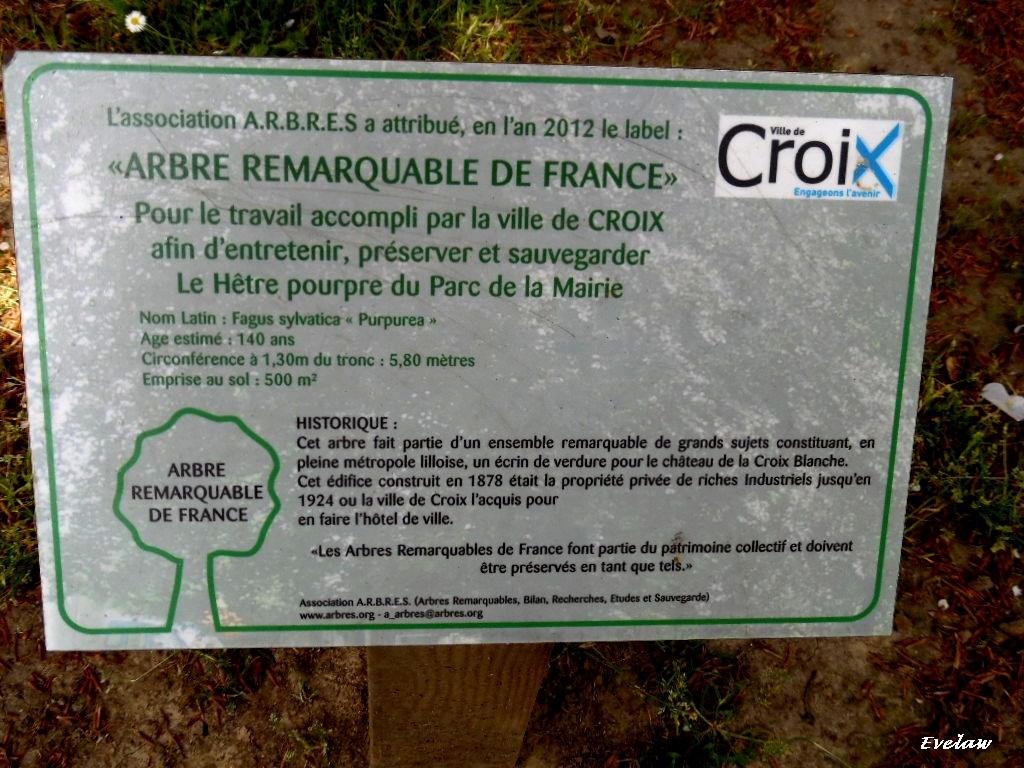 LA MAIRIE DE CROIX  ET  SON PARC