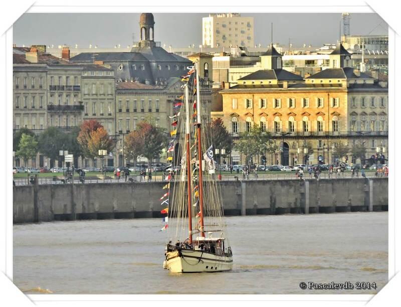 L'Hermione à Bordeaux - 10/11