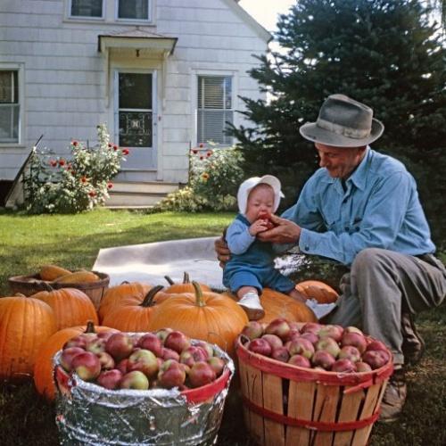 Grand-père et l'enfant