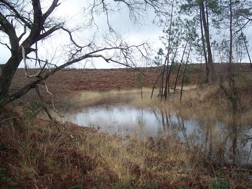 lagune rempli d'eau