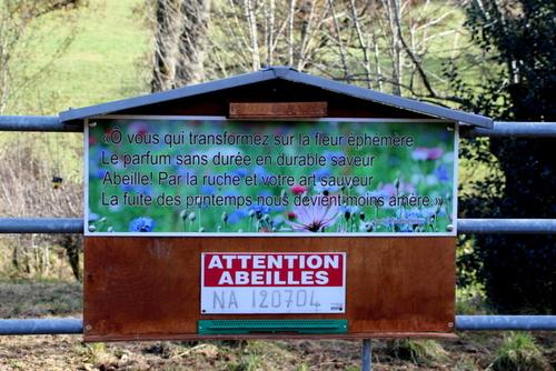 Balade au Col d' Aujols