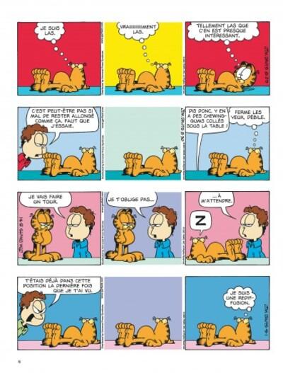 Garfield chat académie