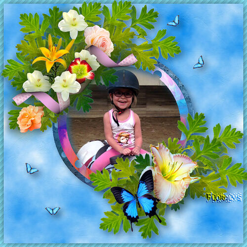 My blue butterfly