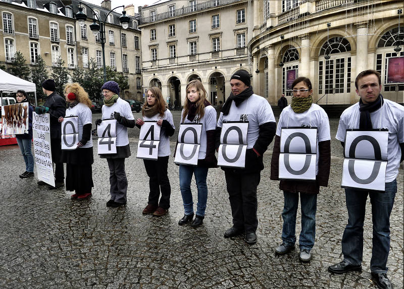 nea - Abolition de la viande - Rennes - Janvier 2013