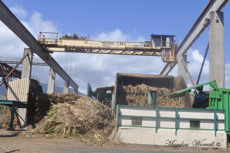 La Réunion : Pôle canne du Gol