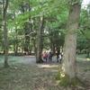 Copie de balade la forêt des heures 033.jpg