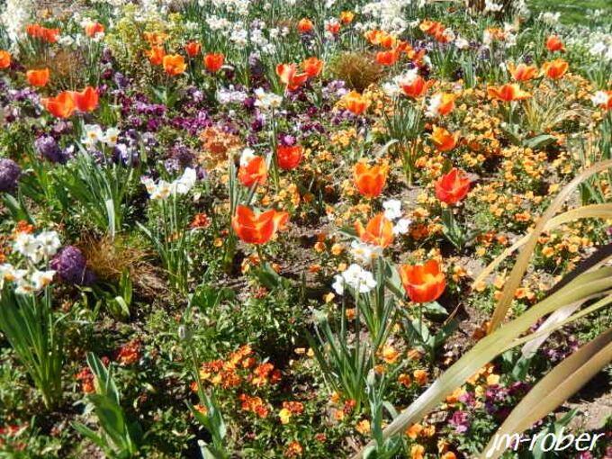 Limoges: Une petite balade fleurie autour de la ville
