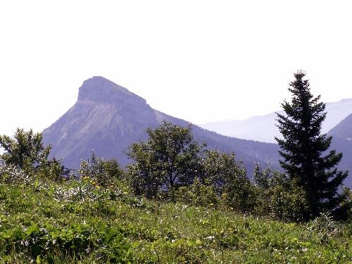 St Pierre de Chartreuse (38) - 6 09 2009
